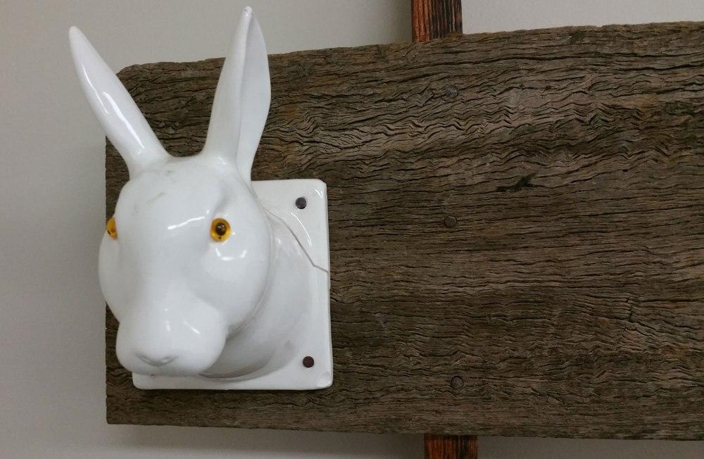 Bunny-closeup-big
